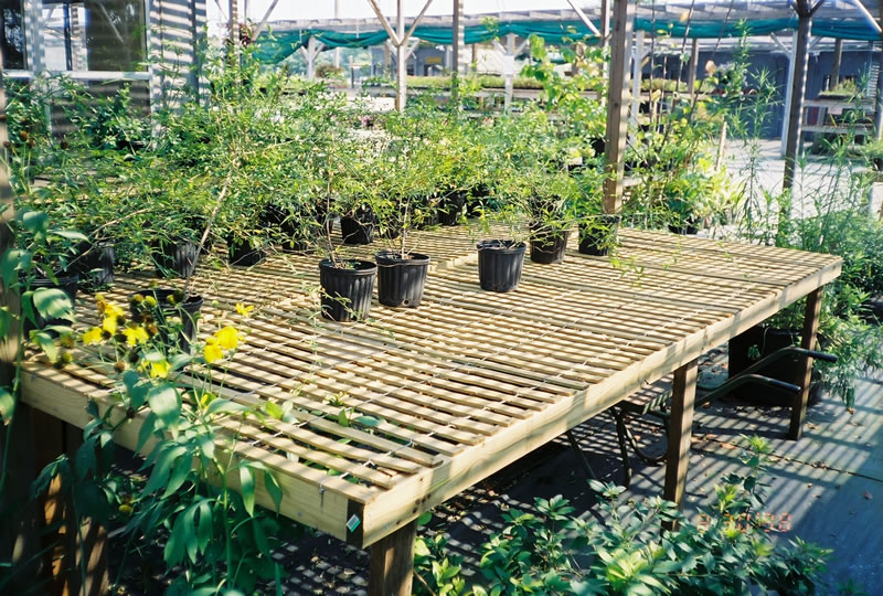 Wood greenhouse benches woodworking tools for children for Inexpensive greenhouse shelving wood